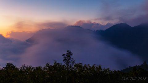 Reisverslag Taiwan – Alishan national forest